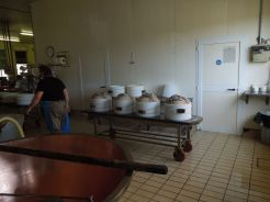 Parmesan Factory Tour